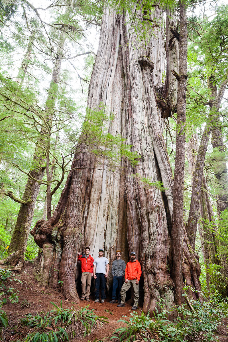 Group shot with the Cheewhat Giant, Canada's largest tree!