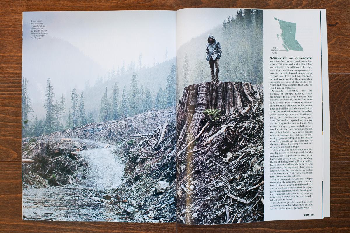 BC-Magazine-Old-Growth-TJ-Watt-4.jpg