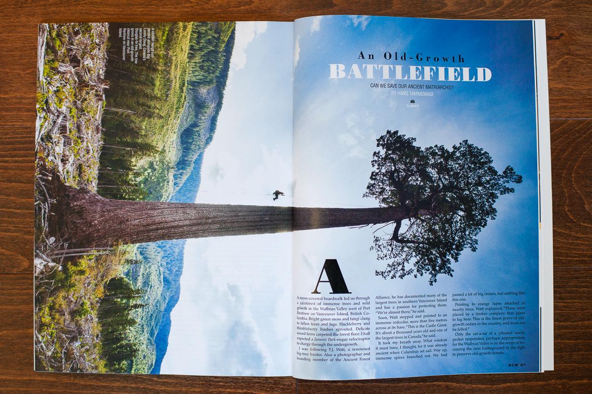 BC-Magazine-Old-Growth-TJ-Watt-3.jpg