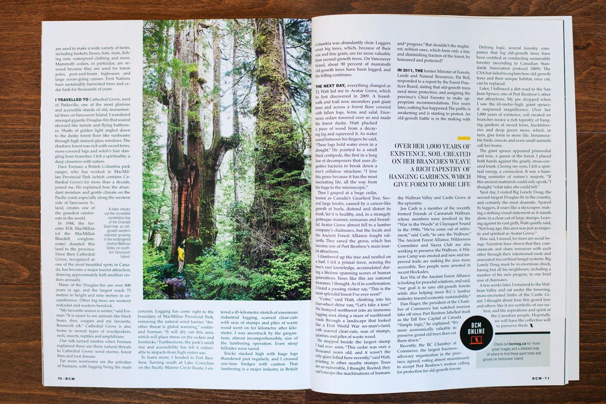 BC-Magazine-Old-Growth-TJ-Watt-5.jpg