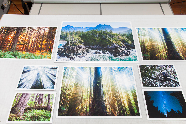 Fine-Art-Prints-TJ-Watt-1.jpg