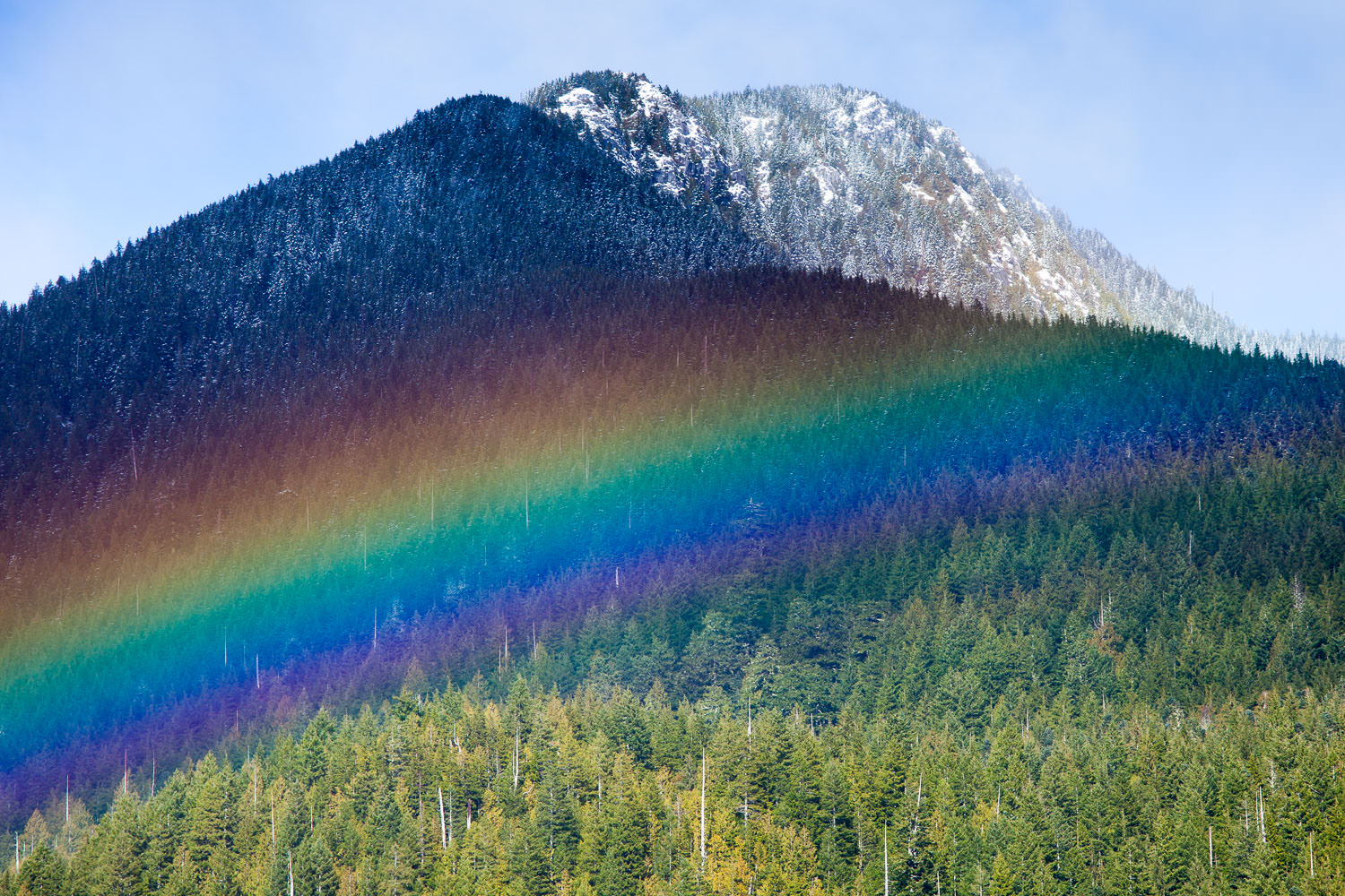 A giant rainbow arcs across the ancient forests of Edinburgh Mountain near Port Renfrew. I've never seen a rainbow so intense or that hugged the land so tightly. As new roads and clearcuts continue to threaten the largest remaining intact old-growth forest here on southern Vancouver Island, I couldn't help but think that the mountain was happy to see us there, working to protect its forest friends.  Canon 5D MK2   70-200 f/4L lens   1/200sec   f/8.0   ISO 200.