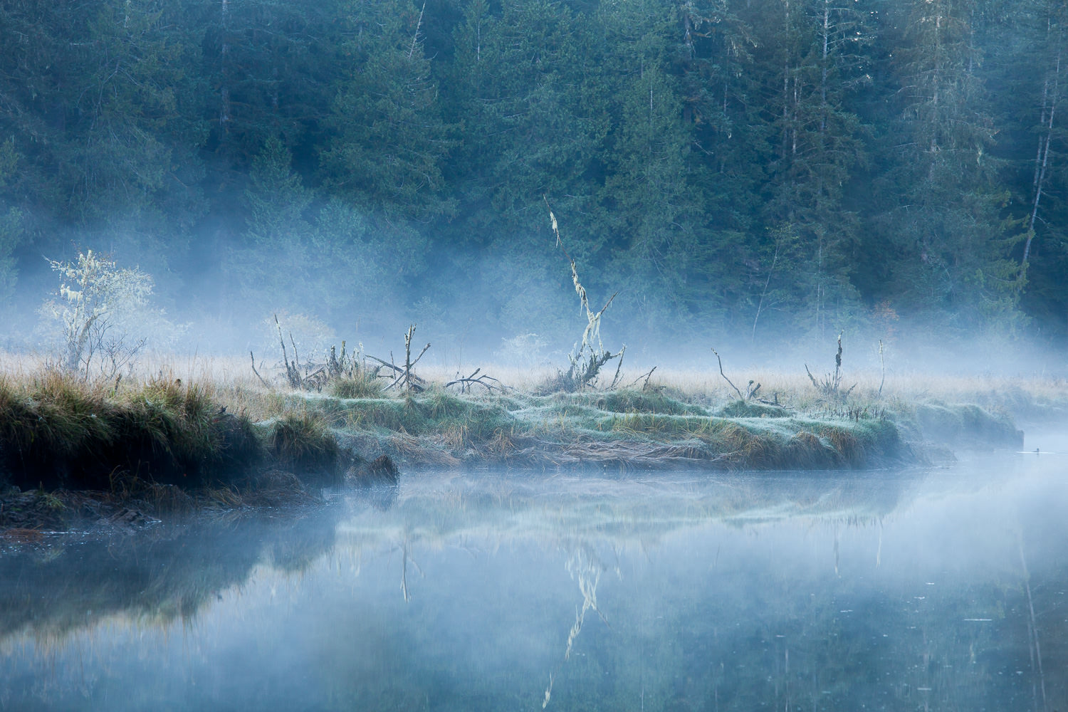 The San Juan River estuary is one of my very favourite places on Vancouver Island. It's home to an amazing array of wildlife including elk, deer, cougars, bears, wolves, countless birds, and much, much more. It's in a constant flux as well, ever changing with the rise and fall of the tides. Here, mist washes over the meadow during a chilly autumn sunrise.  Canon 5D MK2 | 70-200 f/4L IS lens | 1/20 sec | f/8 | ISO 200.