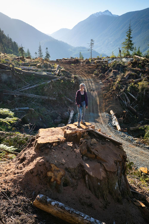 nahmint-valley-cedar-stump-jane-morden.jpg