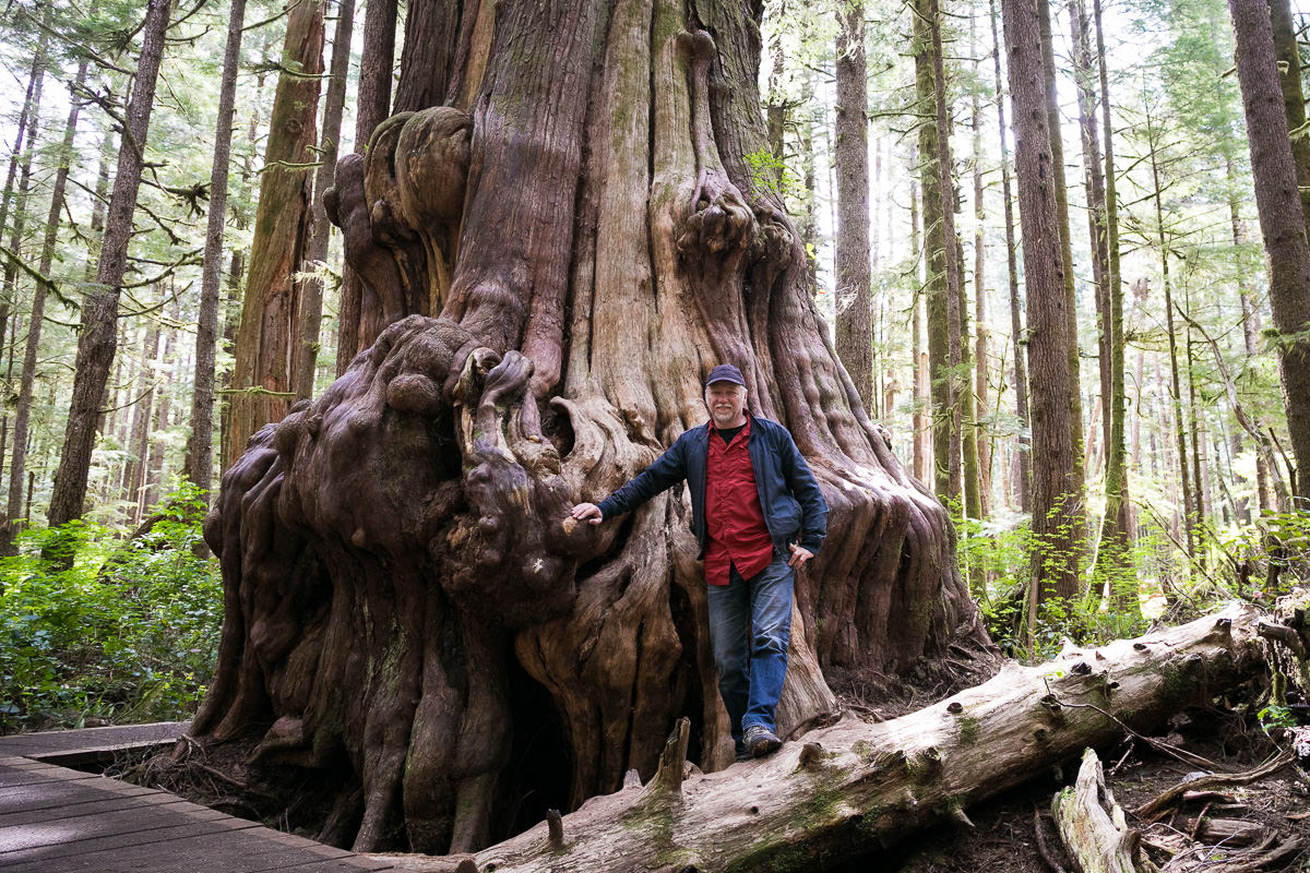 Renowned photographer and artist Edward Burtynsky at the giant cedar in the Lower Avatar Grove near Port Renfrew.
