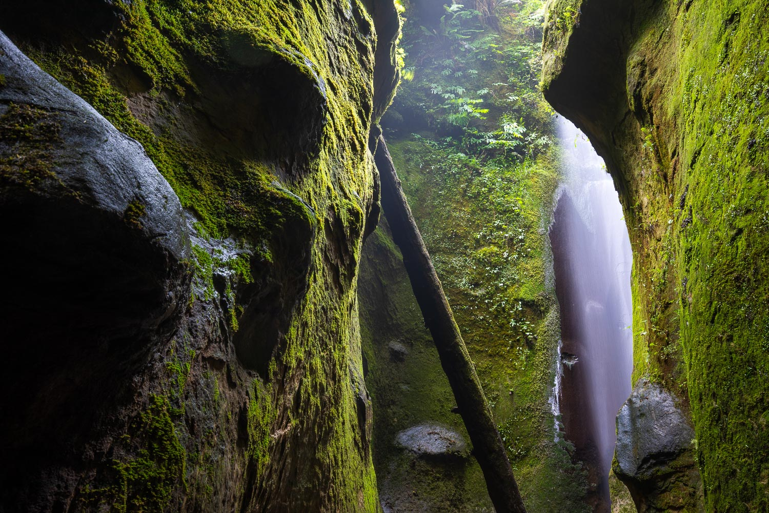 The hidden sandstone canyon and waterfall at Sombrio Beach is a truly magical place. I never tire of coming here as it always looks a little different depending on the time of day and the season. Aside from the picturesque waterfall, mosses, and ferns, there's an eye-catching blend of natural curves and lines well.