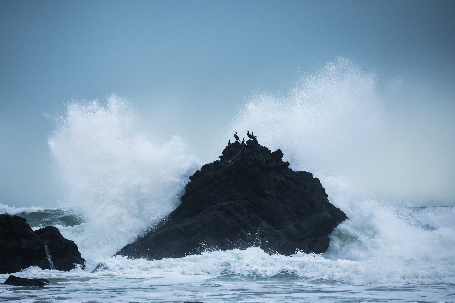 A wave breaks over the rocky shorline of Sombrio Beach. Storm watching is one of my very favourite pastimes and this is one of the best places to chase big waves! I was also impressed by how calmly the cormorants sat atop their precarious perch as well.