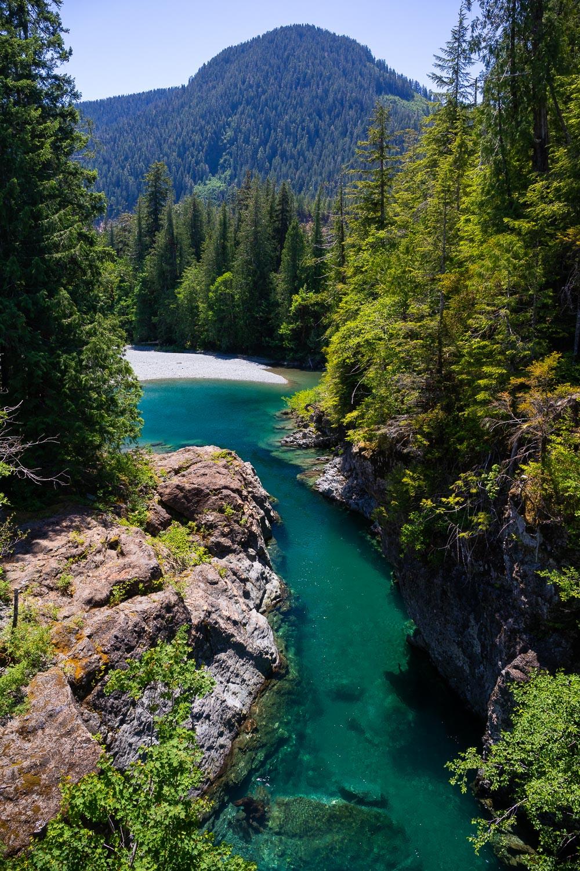 nahmint-river-valley-port-alberni-tj-watt.jpg