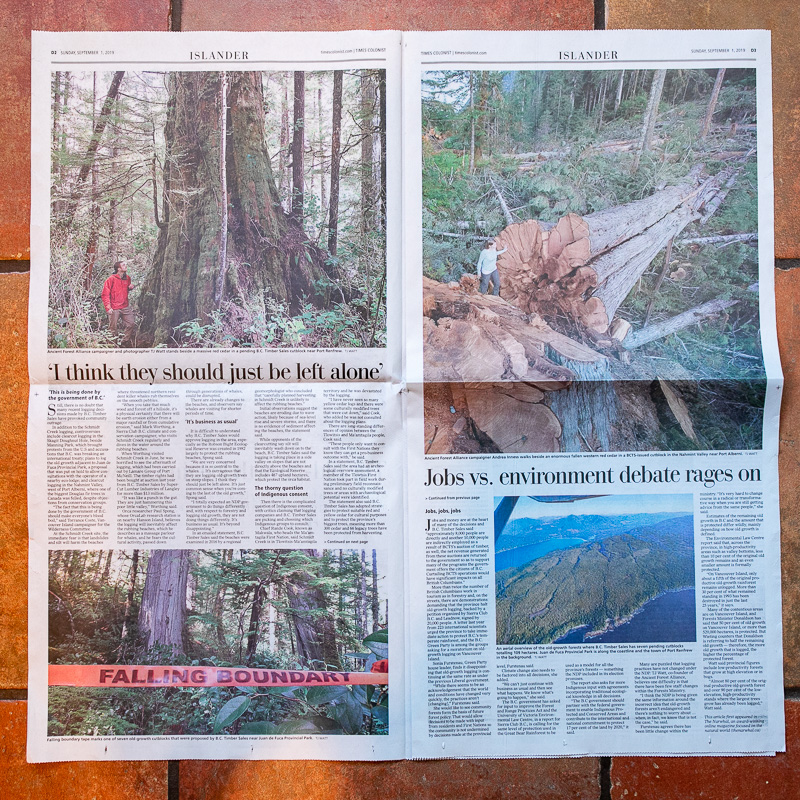 Times-Colonist-Sept-2019-Old-Growth-2.jpg