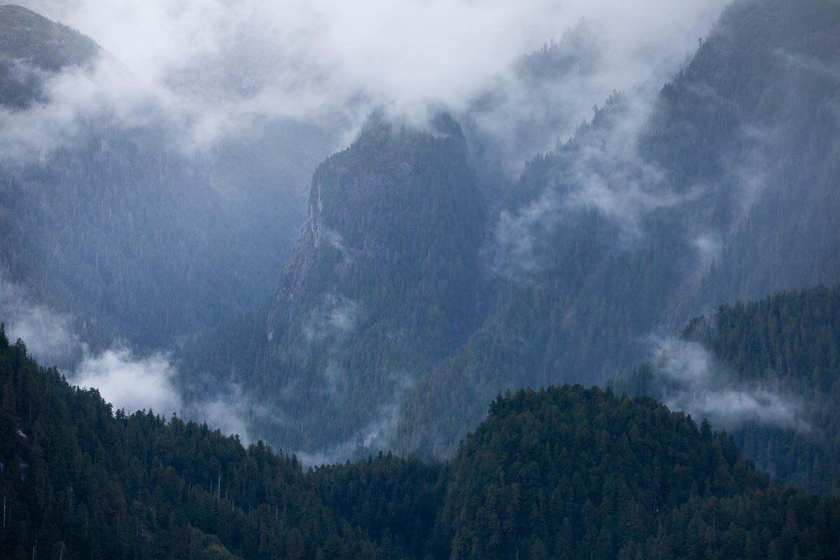 Great-Bear-Rainforest-2-Sept-551.jpg