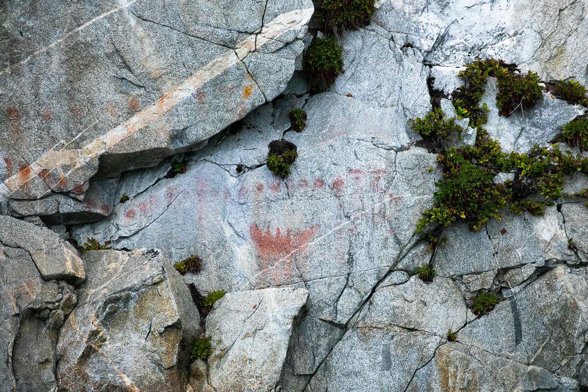 Great-Bear-Rainforest-2-Sept-131.jpg