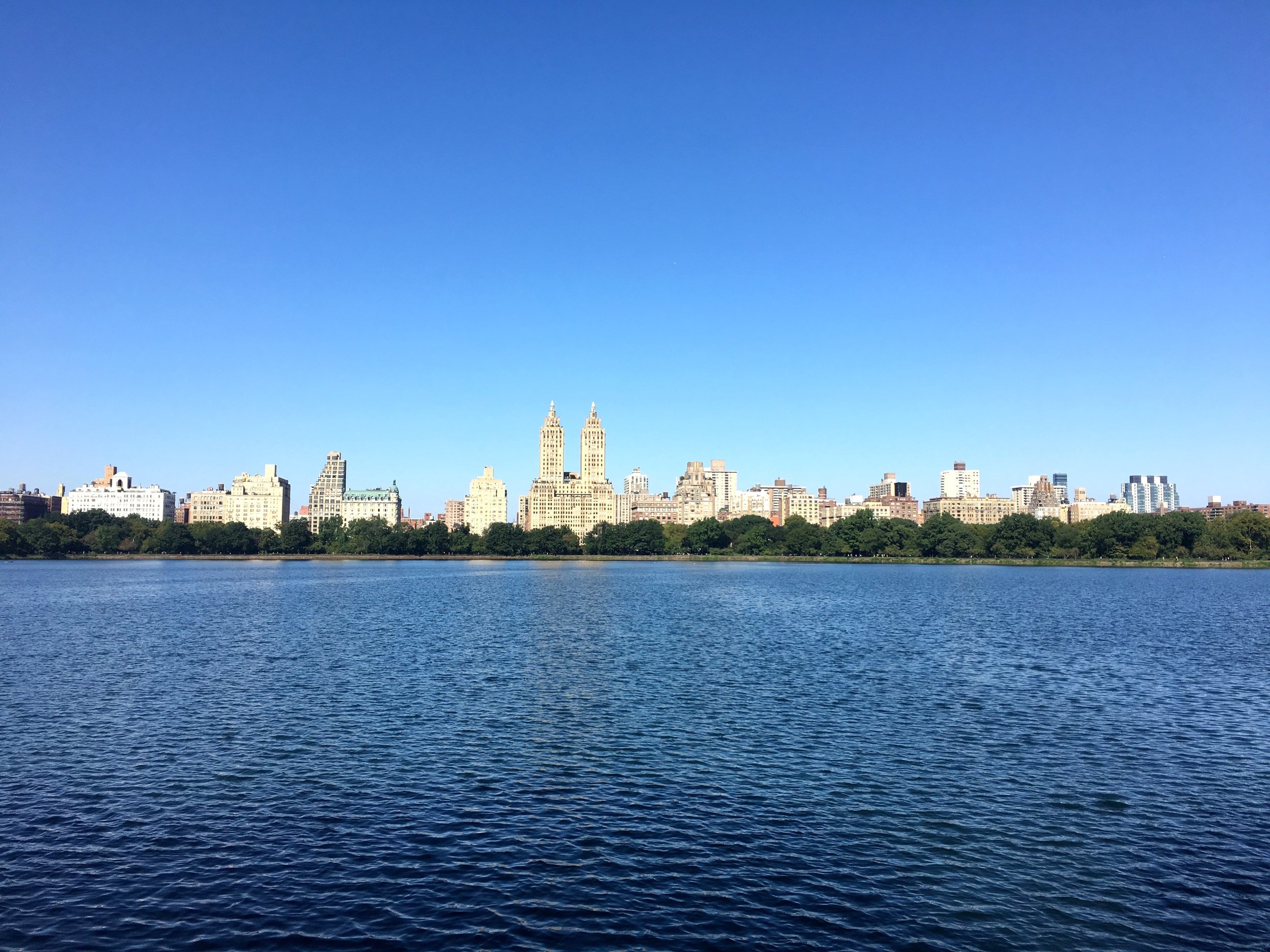 """- """"When you leave New York, you are astonished at how clean the rest of the world is. Clean is not enough.""""-Fran Lebowitz"""