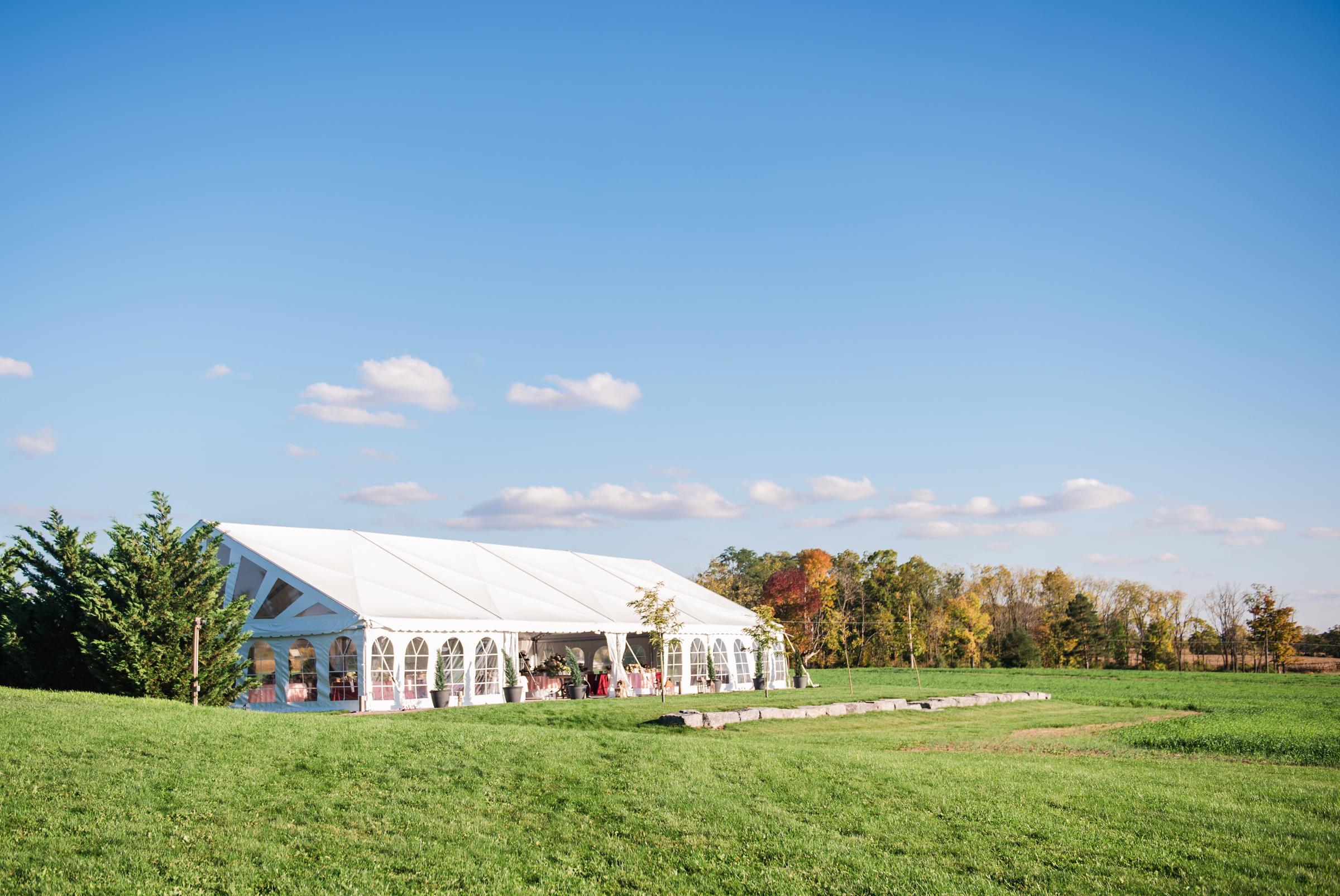 Zugibe_Vineyards_Finger_Lakes_Wedding_JILL_STUDIO_Rochester_NY_Photographer_DSC_3909.jpg