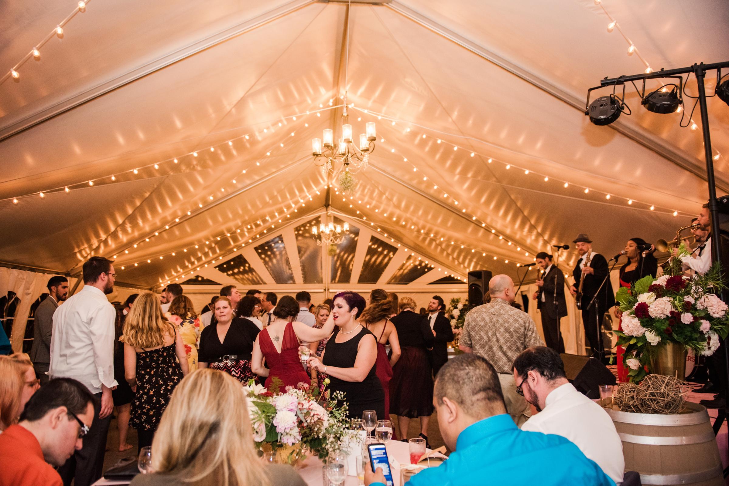 Zugibe_Vineyards_Finger_Lakes_Wedding_JILL_STUDIO_Rochester_NY_Photographer_DSC_4515.jpg