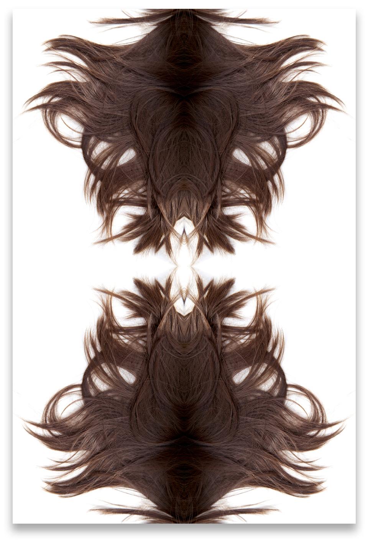 © HAIR COMPOSITION No.5