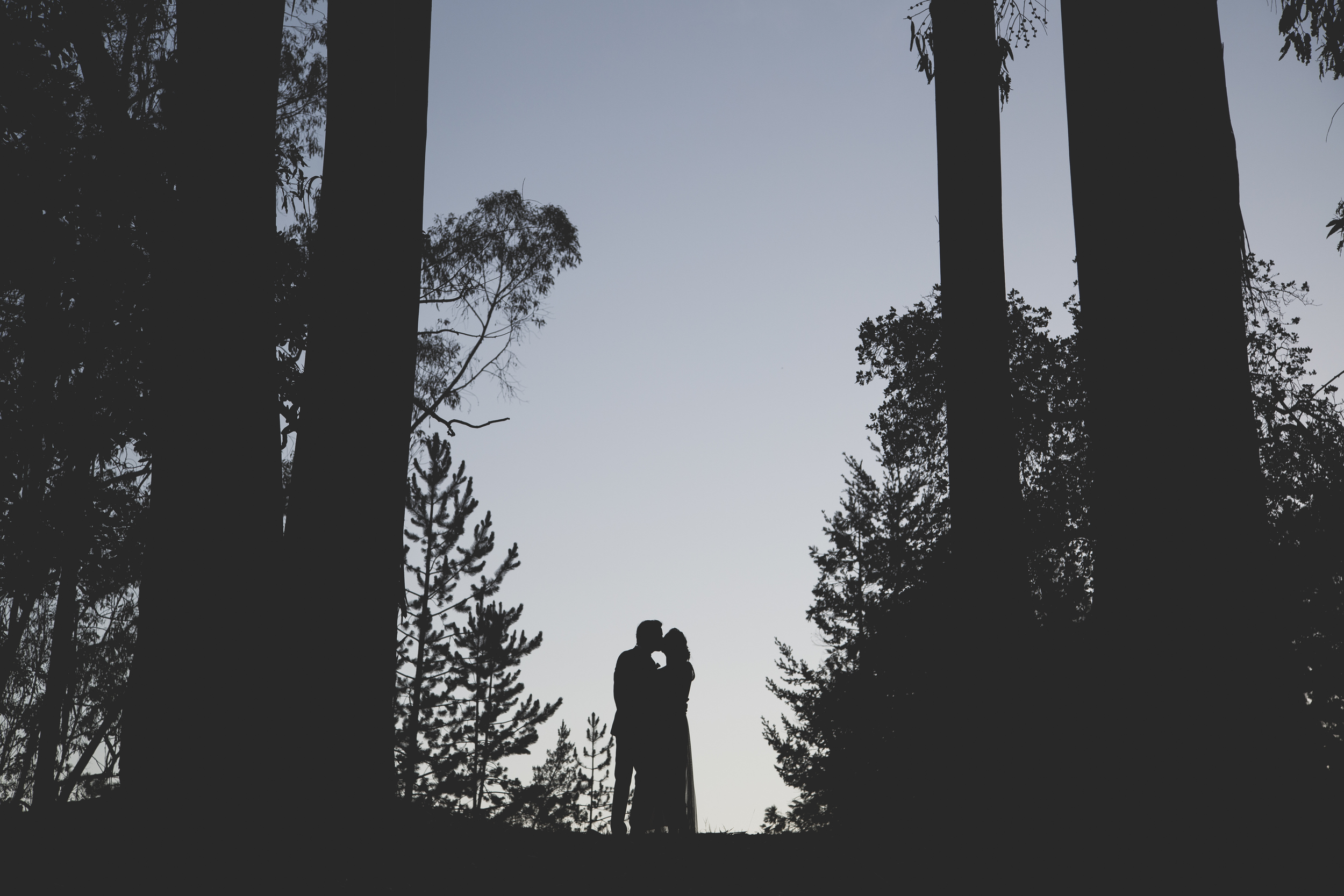 Wedding_Val&Brett_5D_20140802_5371.jpg