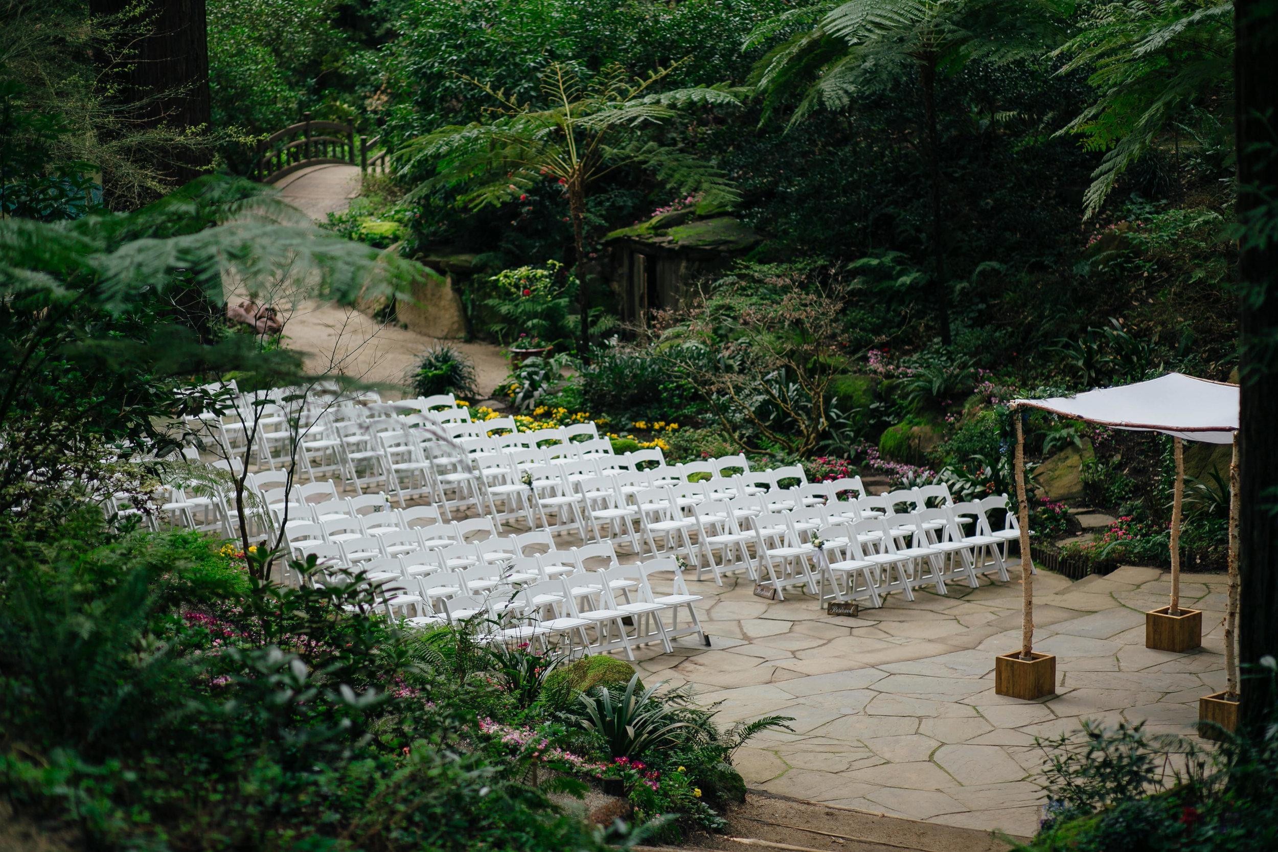 Wedding_T&A_SneakPeek_9.jpg