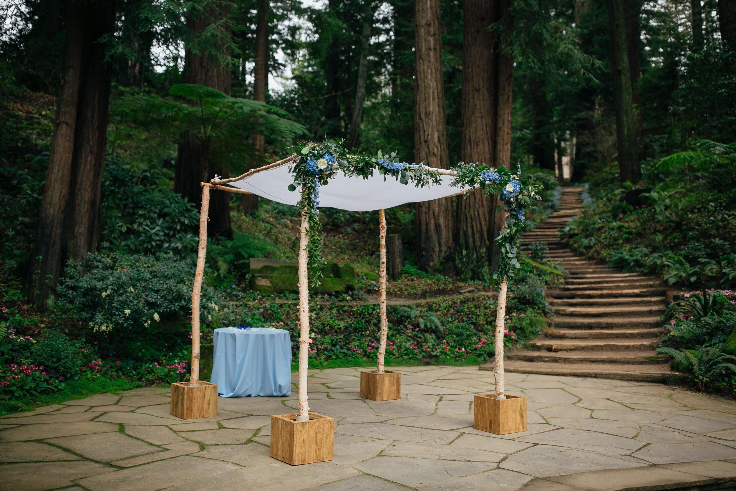 Wedding_T&A_SneakPeek_10.jpg
