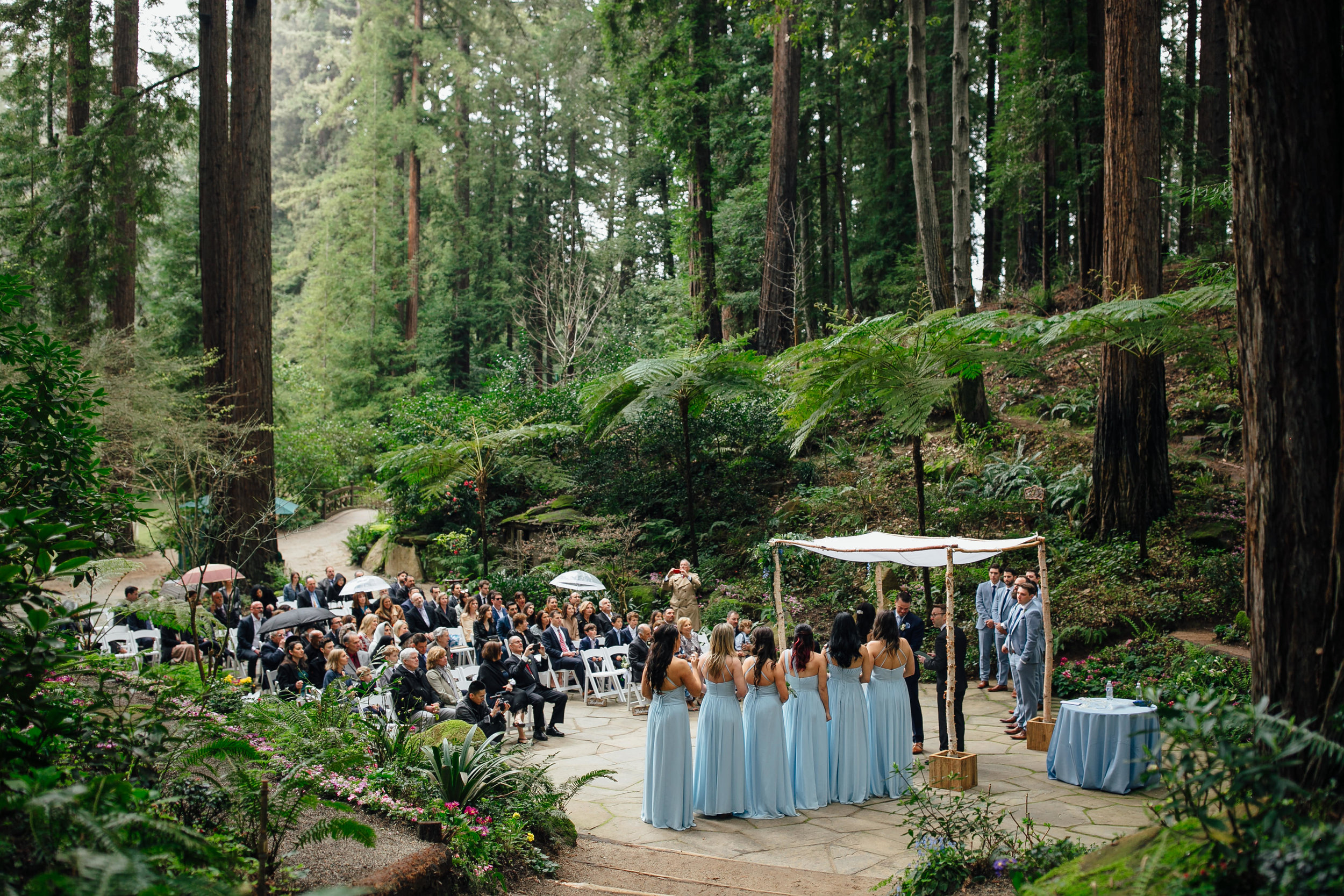 Wedding_T&A_SneakPeek_23.jpg