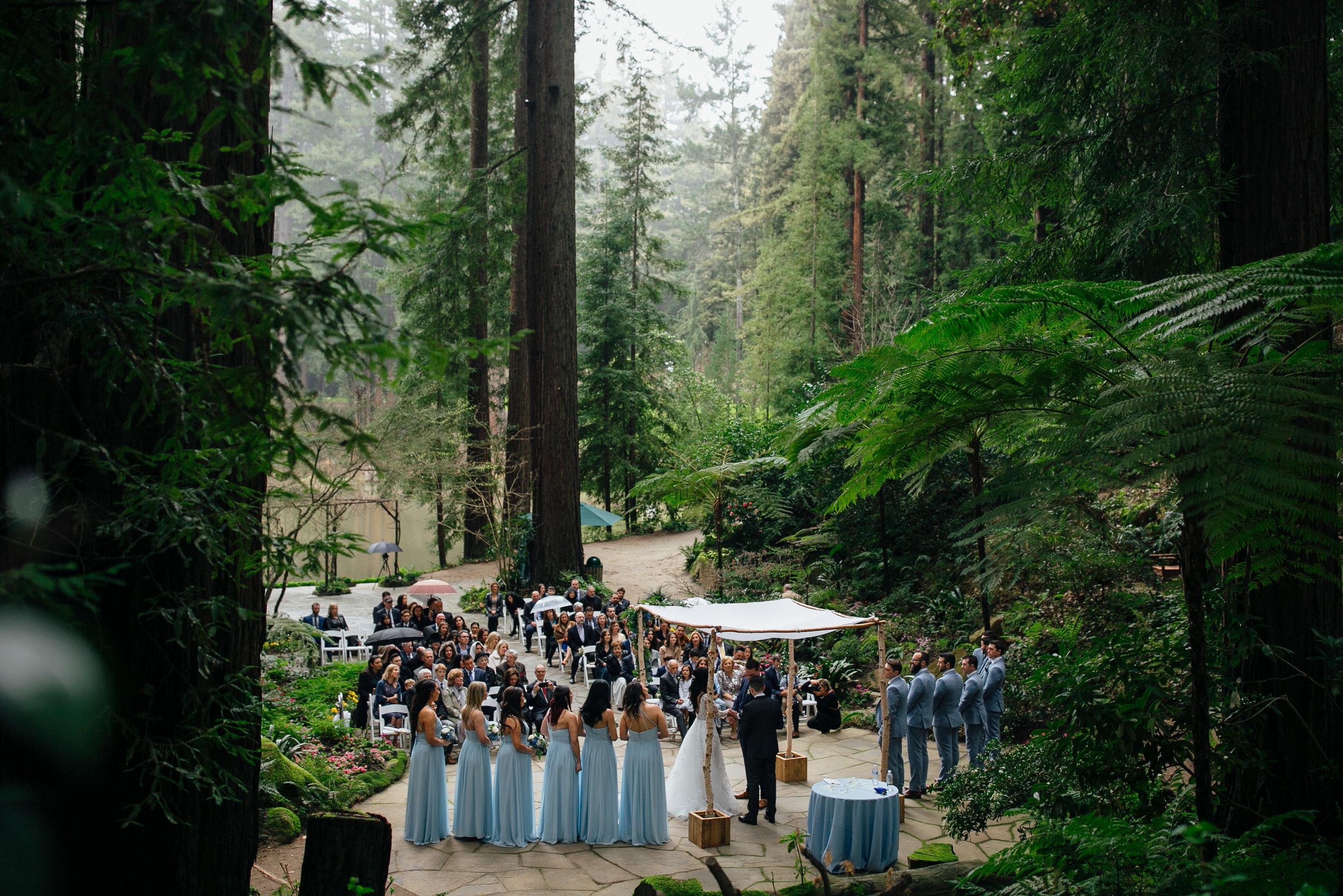Wedding_T&A_SneakPeek_24.jpg