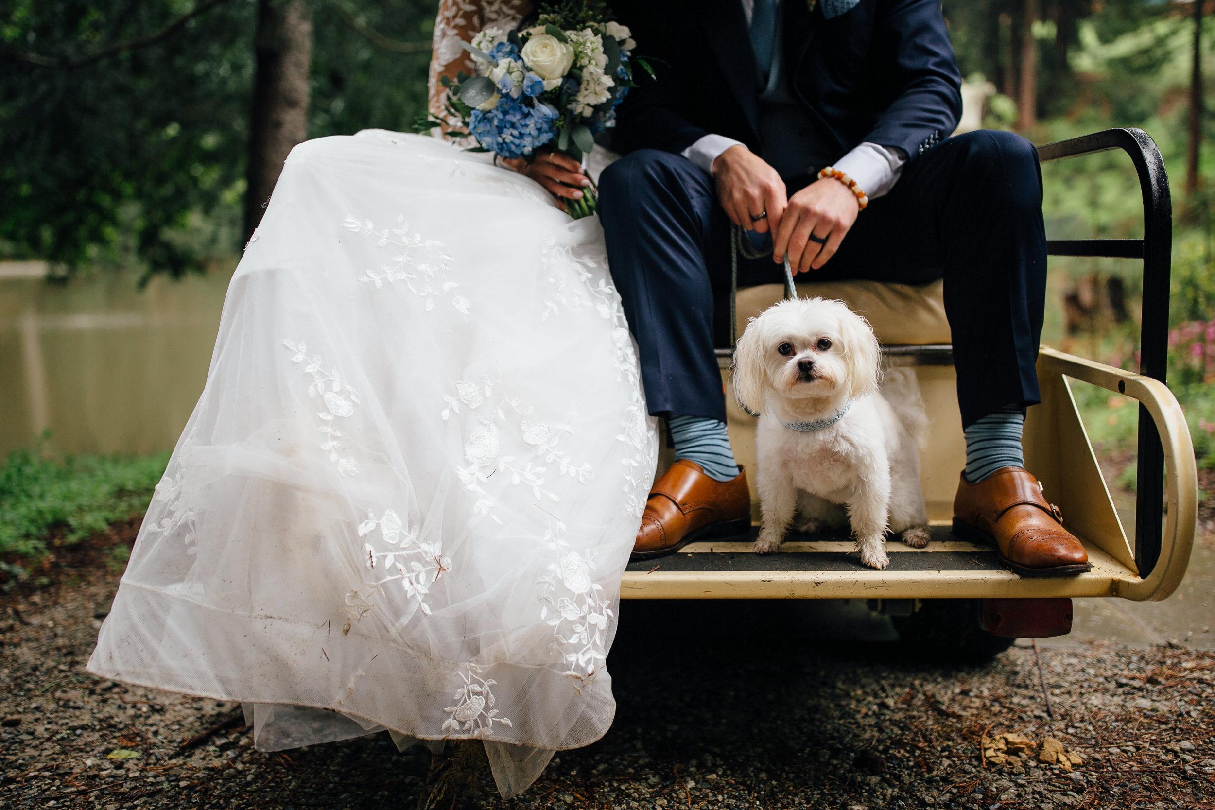 Wedding_T&A_SneakPeek_81.jpg