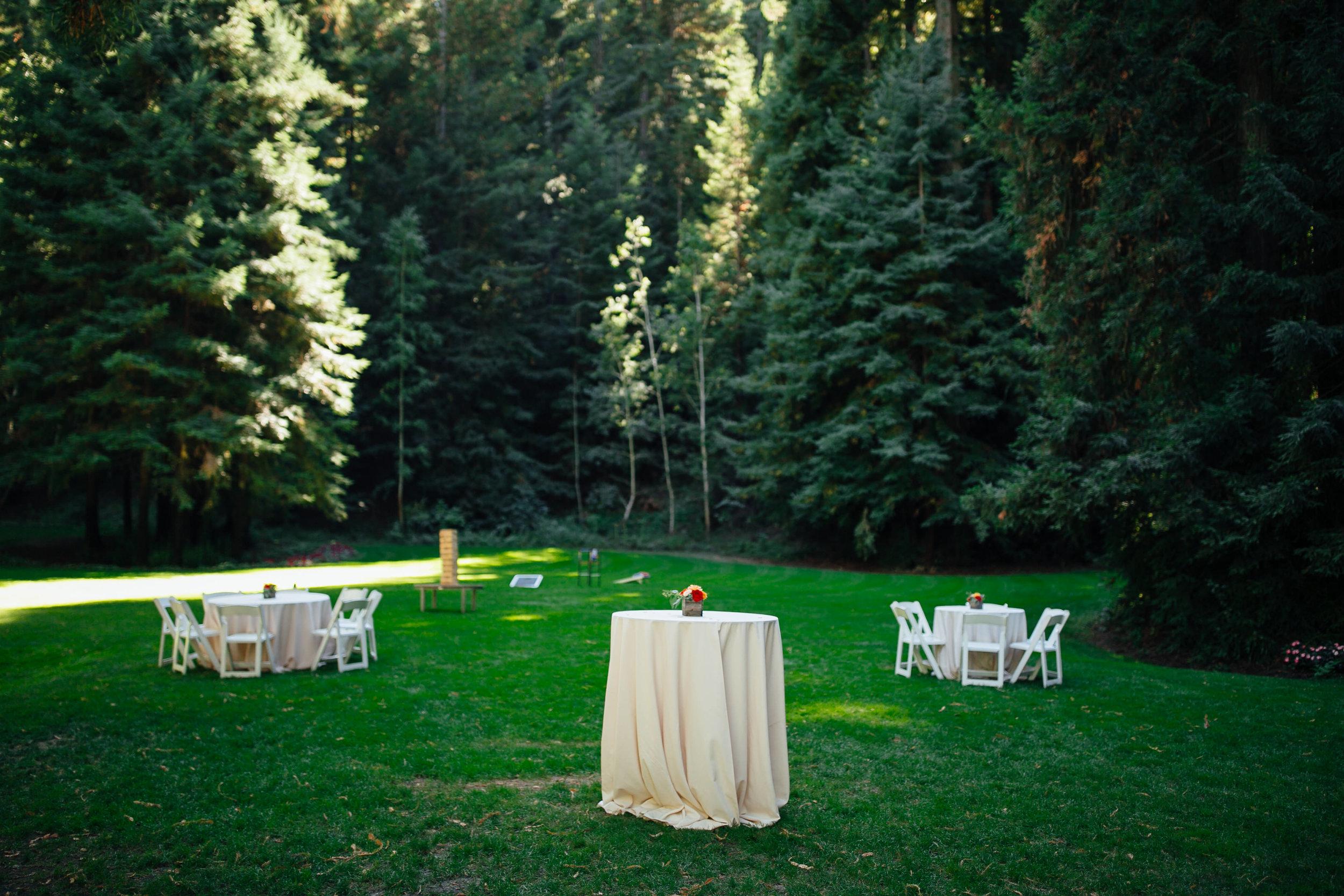 Wedding_M&A_SneakPeek_39.jpg