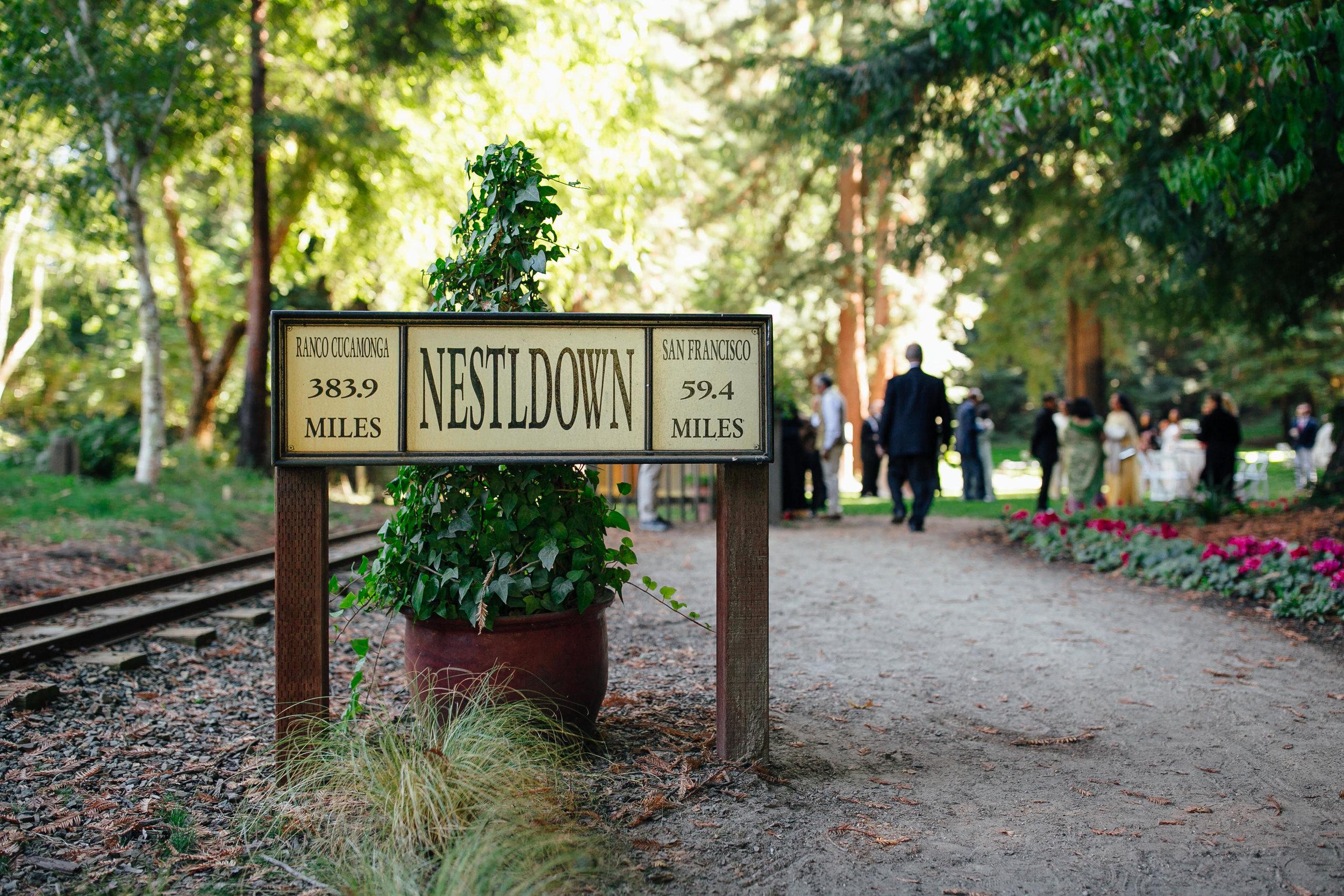 Wedding_M&A_SneakPeek_40.jpg