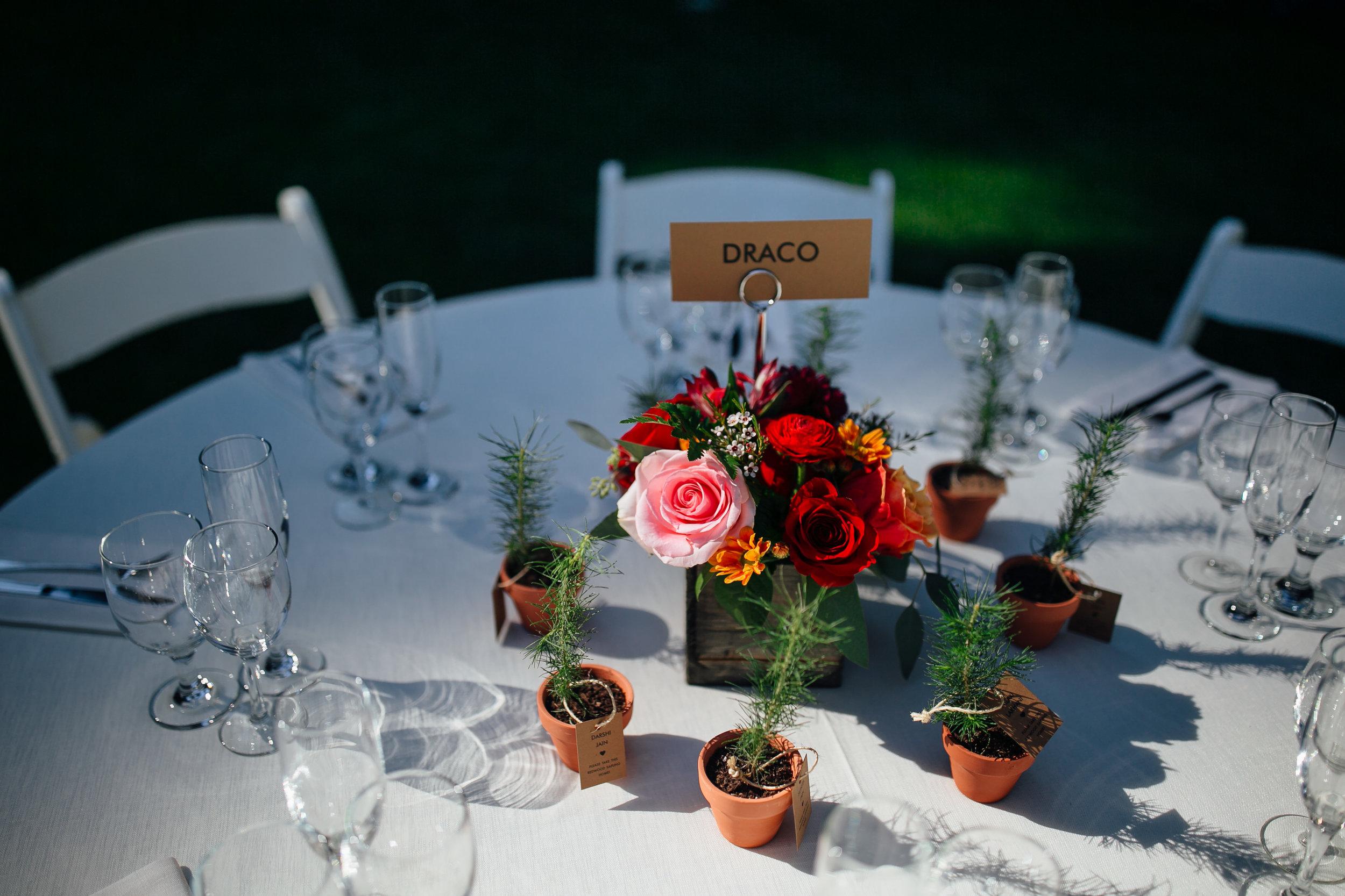 Wedding_M&A_SneakPeek_41.jpg