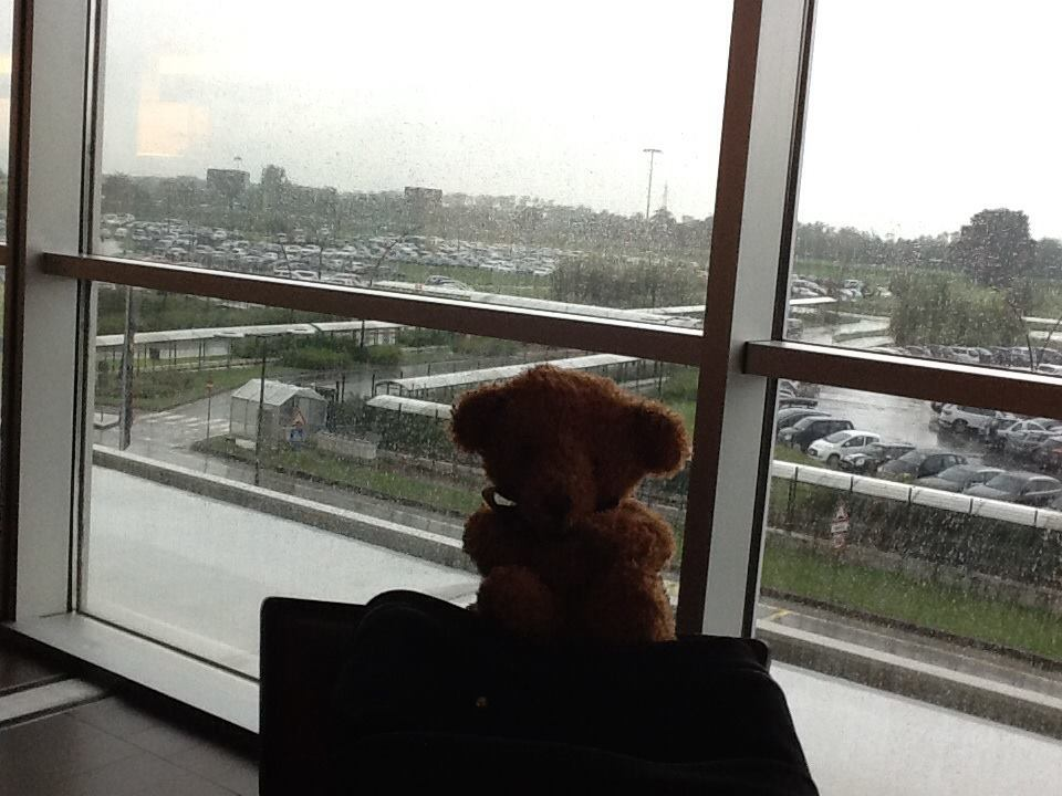 After 2 weeks of beautiful views and weather this was Milan from our airport hotel