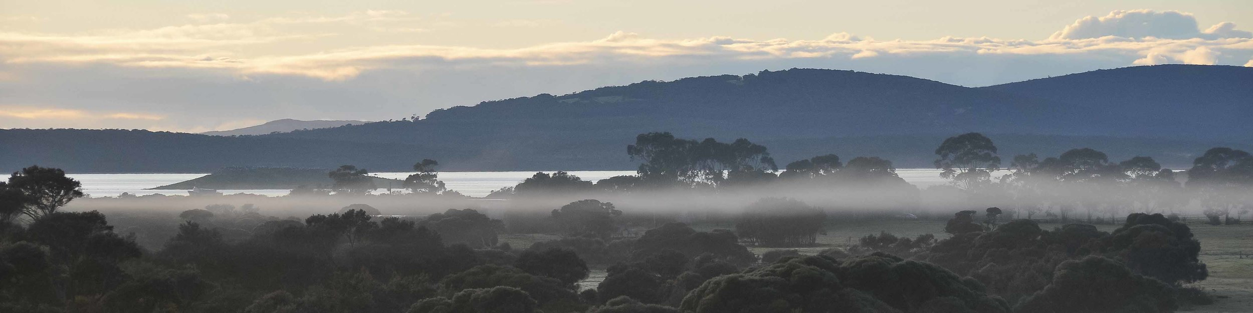 A misty Morning at HideAway Haven, luxury accommodation in Albany