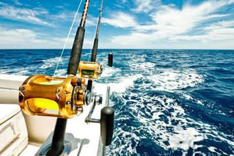 Deep Sea Fishing in the Albany Region