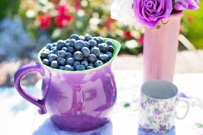 Blueberries at HideAway Haven