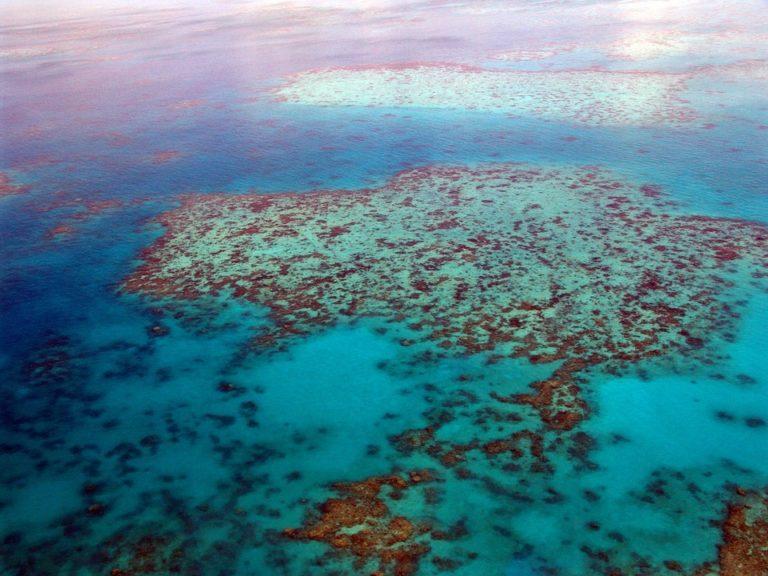 Oceans in danger in Albany Western Australia