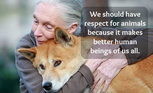 Respect for all animals at HideAway Haven