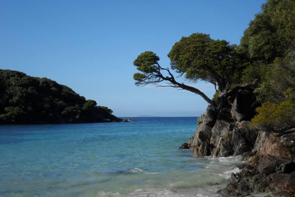 Hartmans+Beach.jpg