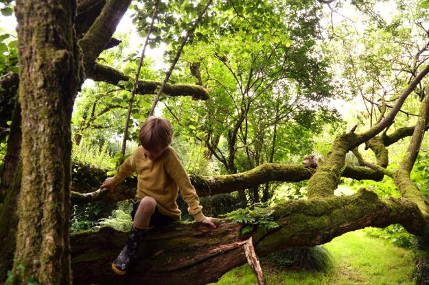 the-welsh-house-littlegreenshed-blog-8.jpg