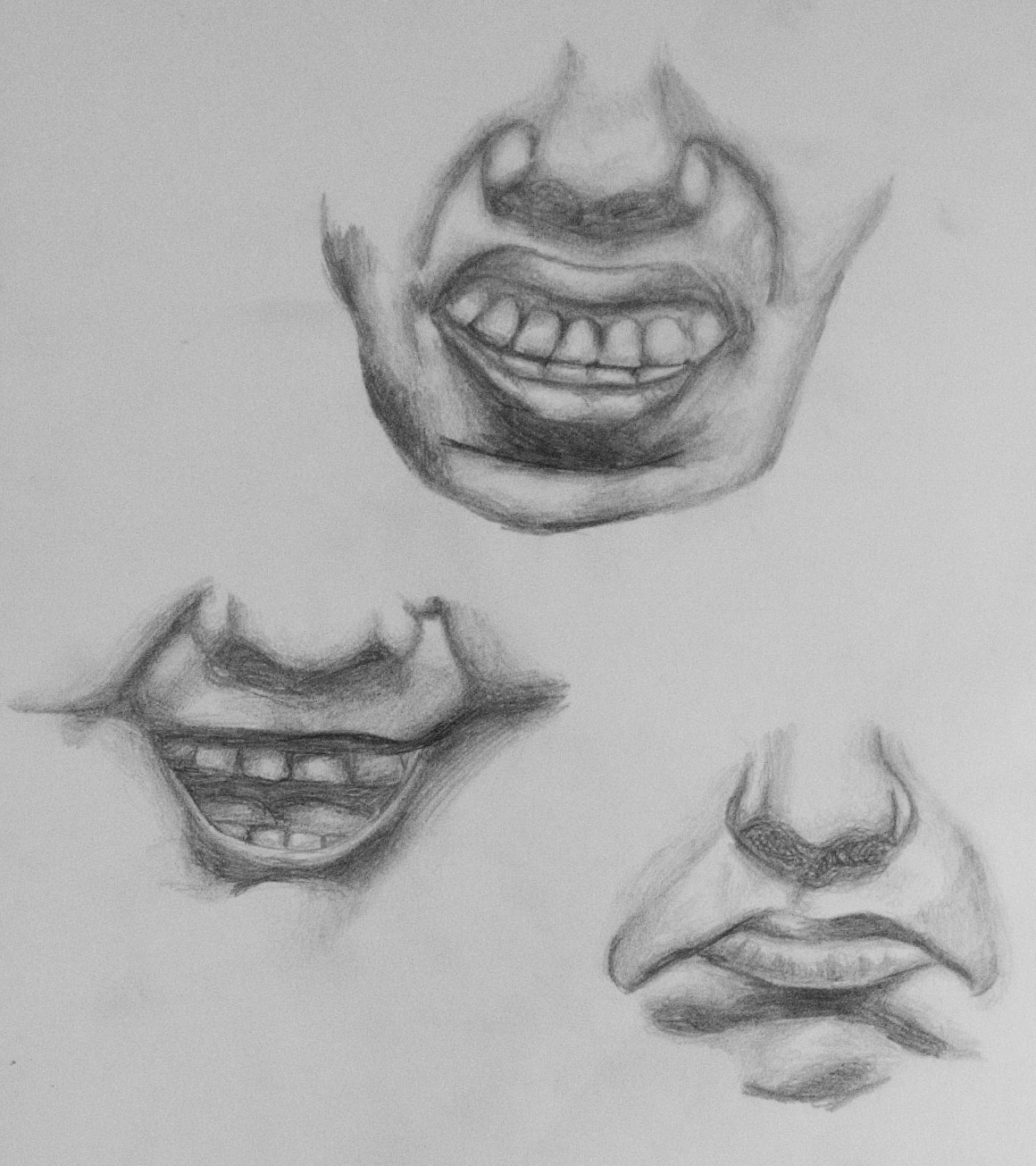 Expression Studies 1by Paula Rand