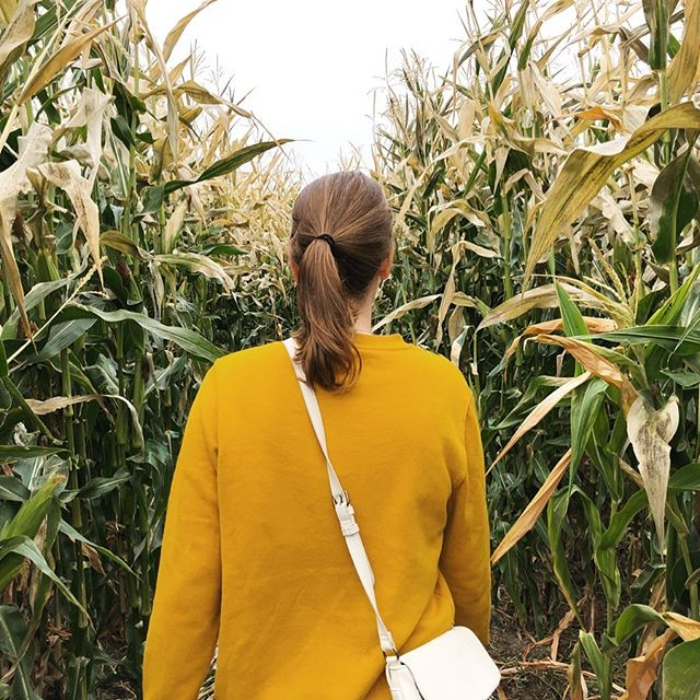 Pumpkin patchin' and corn mazin'
