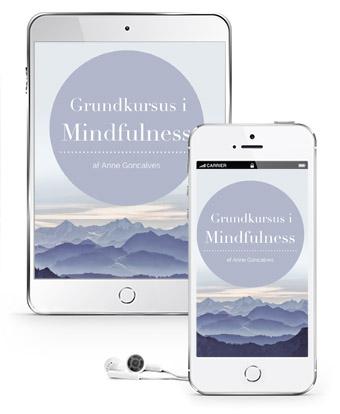 mindfulness-grundkursus-online.jpg