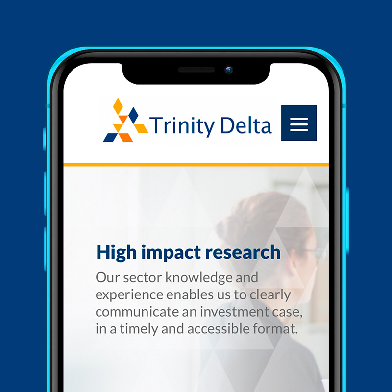 Trinity Delta web design box 1.jpg
