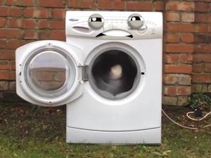 washing2_300x225.jpg