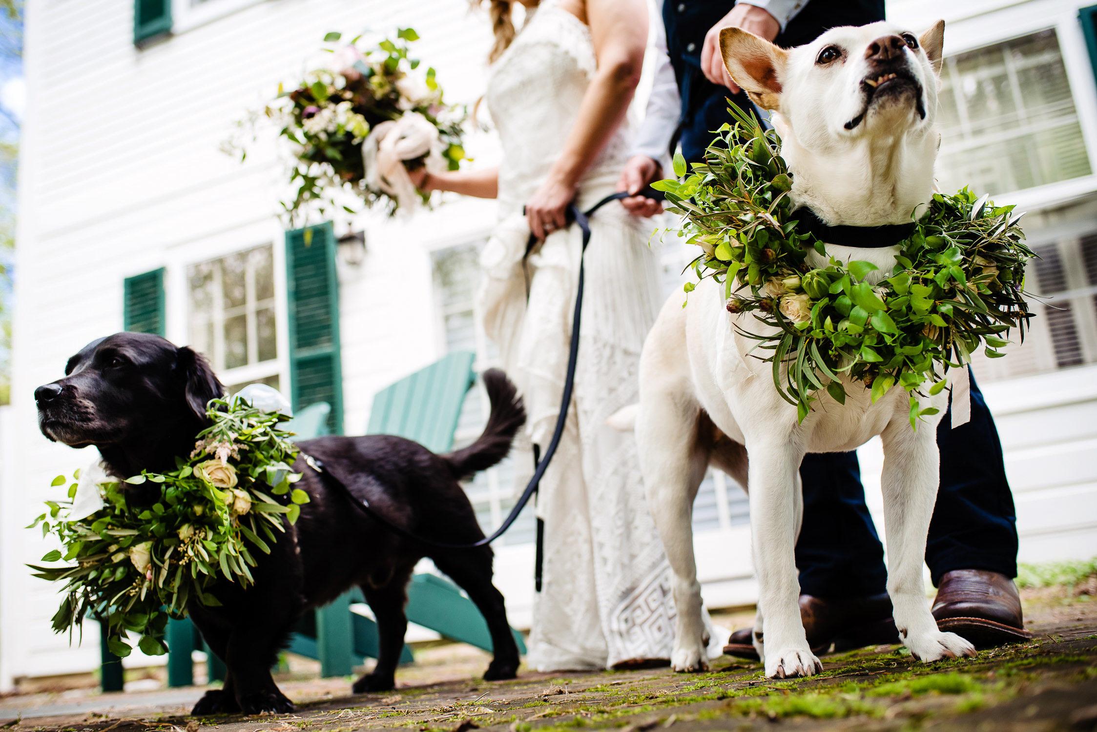 tourterelle-vermont-wedding-photographers-008-2-2247x1500.jpg