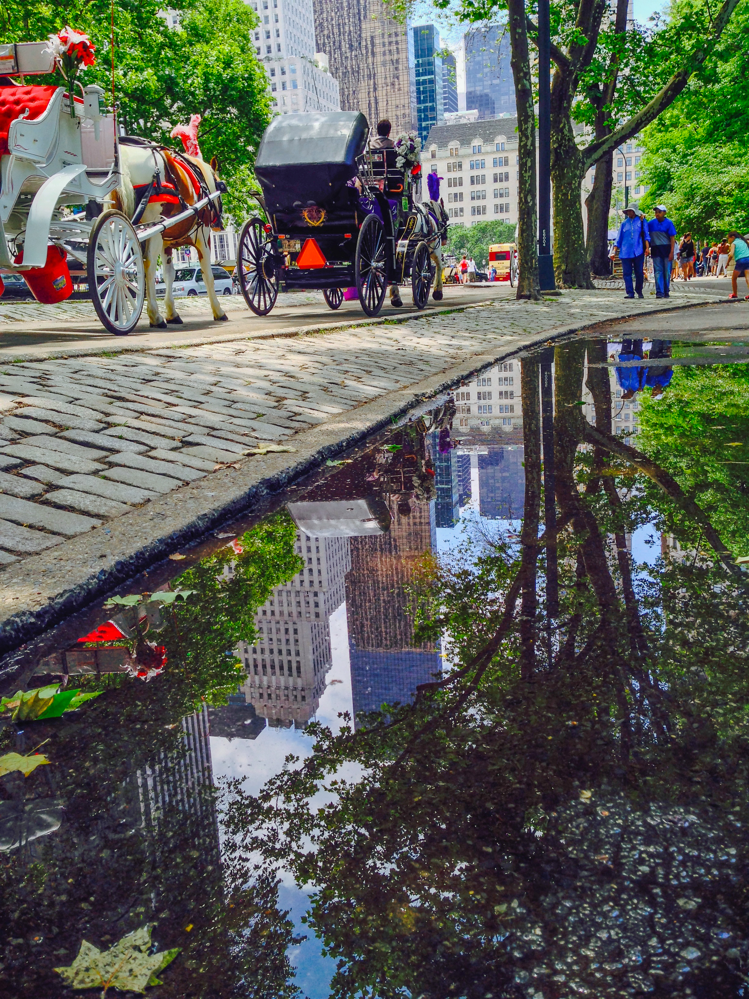 @ Reflection - Central Park LR&ip-6.jpg
