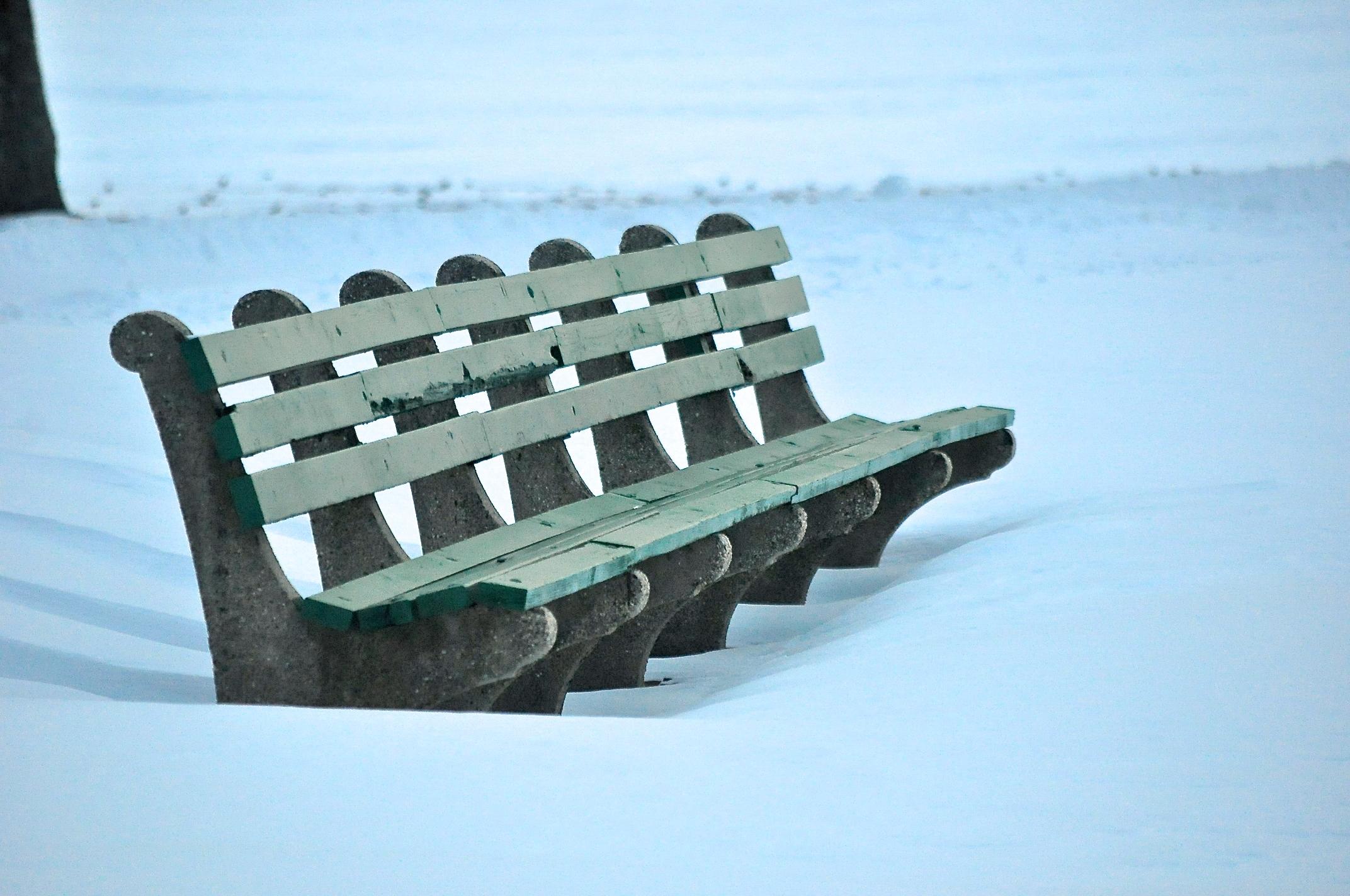 @ @ Snow_Eisenhower_Park - © 2015 Joseph Kellard _bench.jpg.jpg