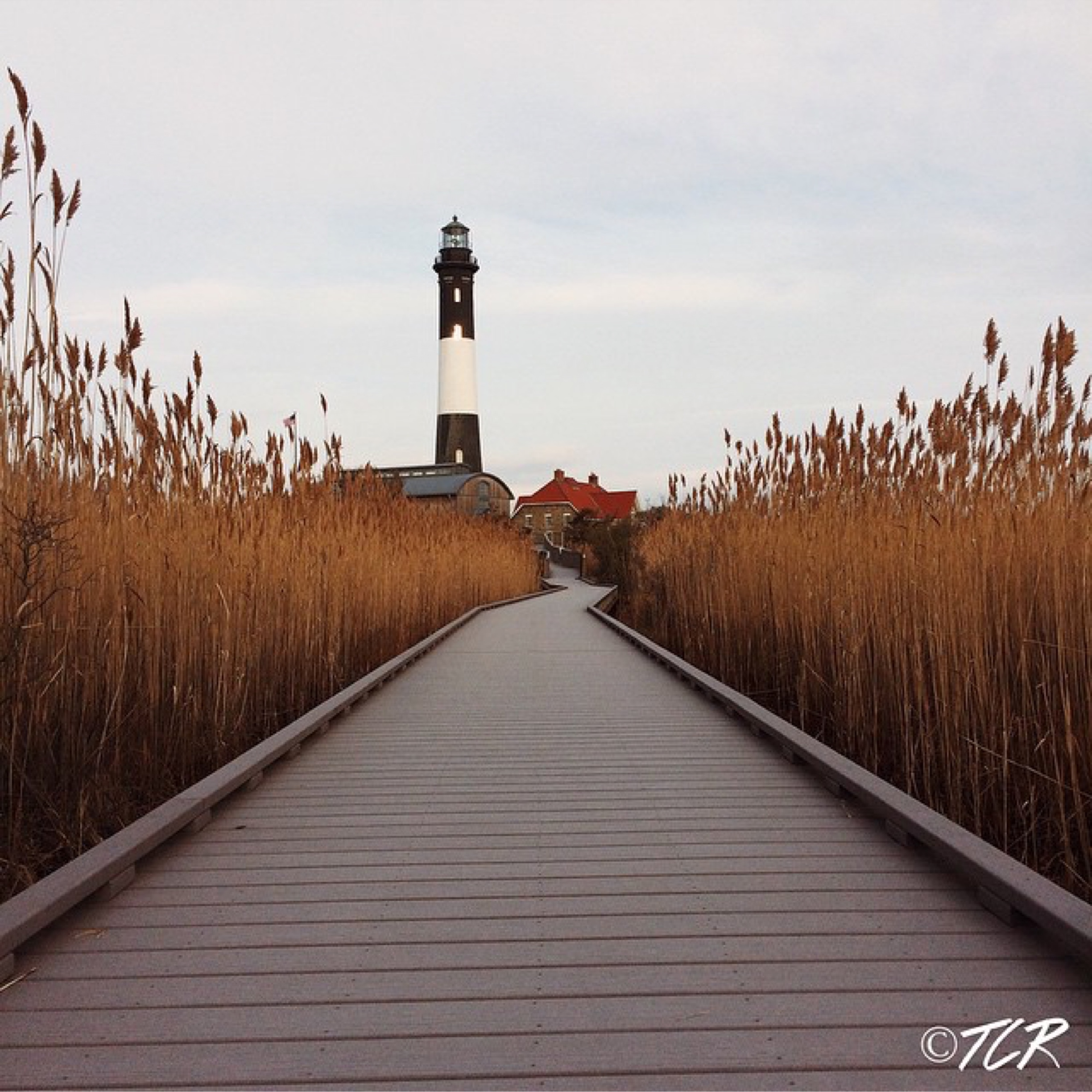 Long Island photographer Tom Reuter snapped this image of the Fire Island Lighthouse with his iPhone 6 camera. (Credit Tom Reuter/https://instagram.com/treuter18)