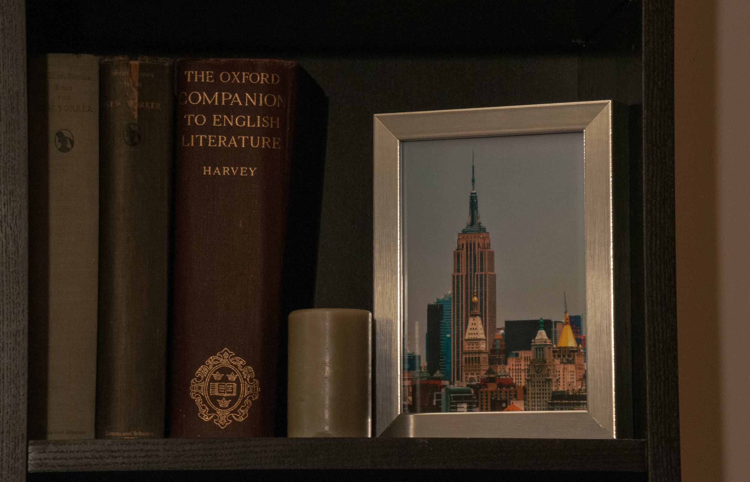 A section of a bookcase in mystudio apartment. (Photo: Joseph Kellard)