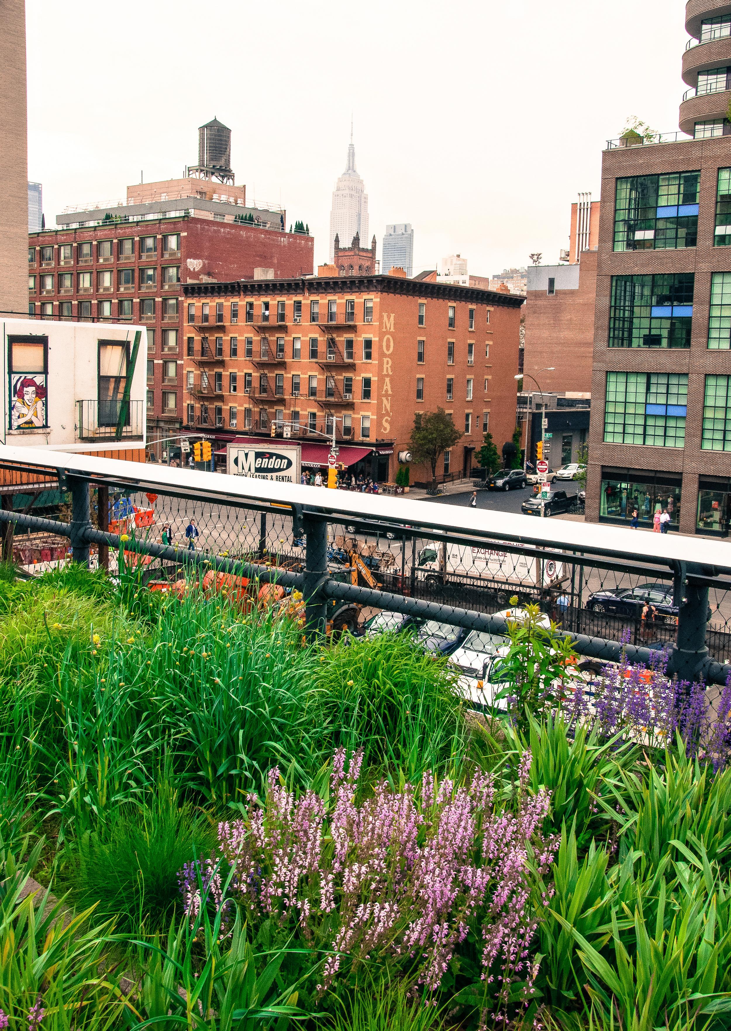 @ @ High Line_.jpg