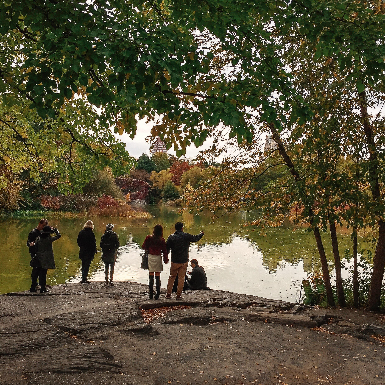 @ @ @  Turtle Pond_Central Park_Oct 2015 copy.JPG