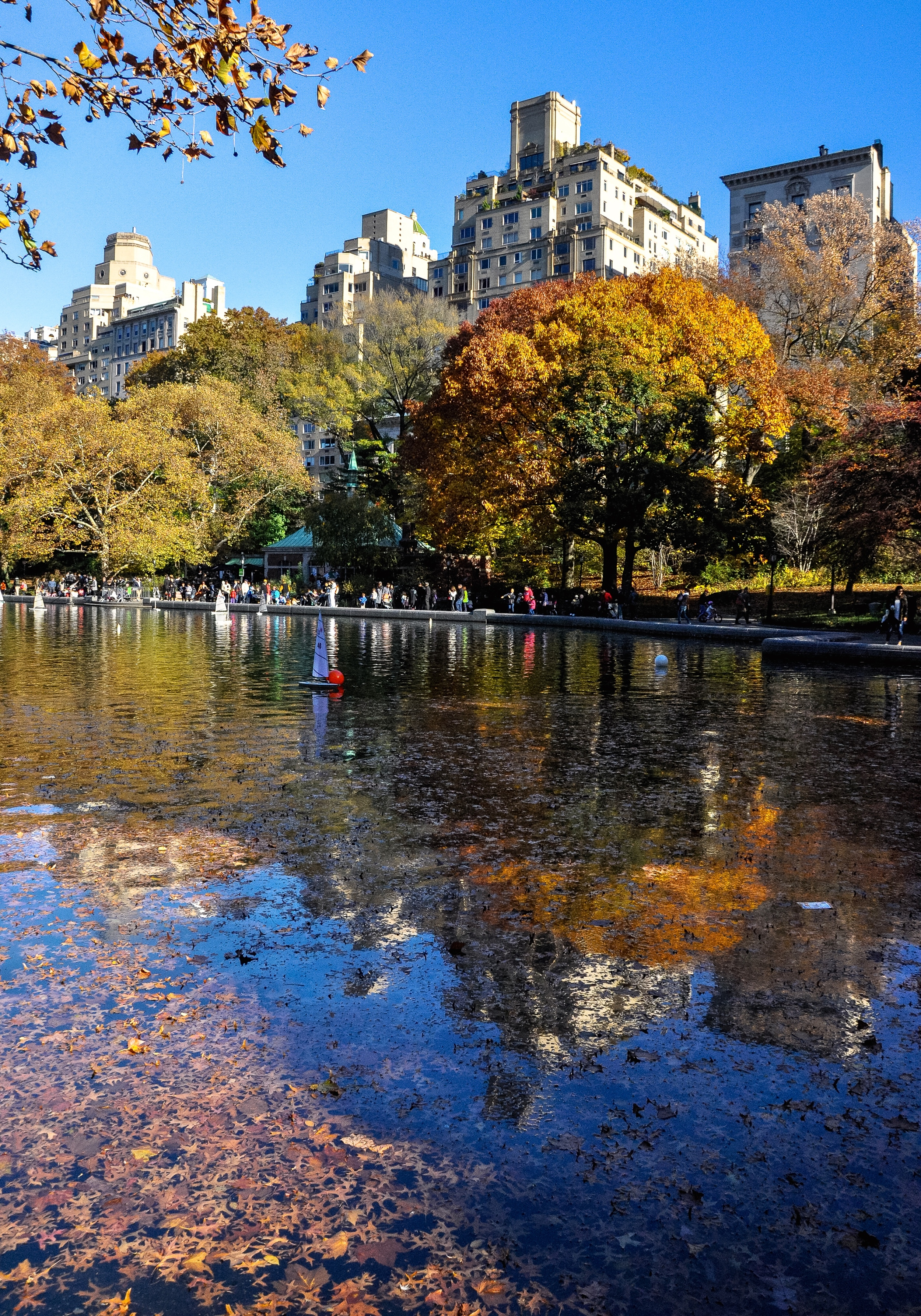 @ @ @ Sail Boat Pond_Conservatory Water_autumn copy.jpg