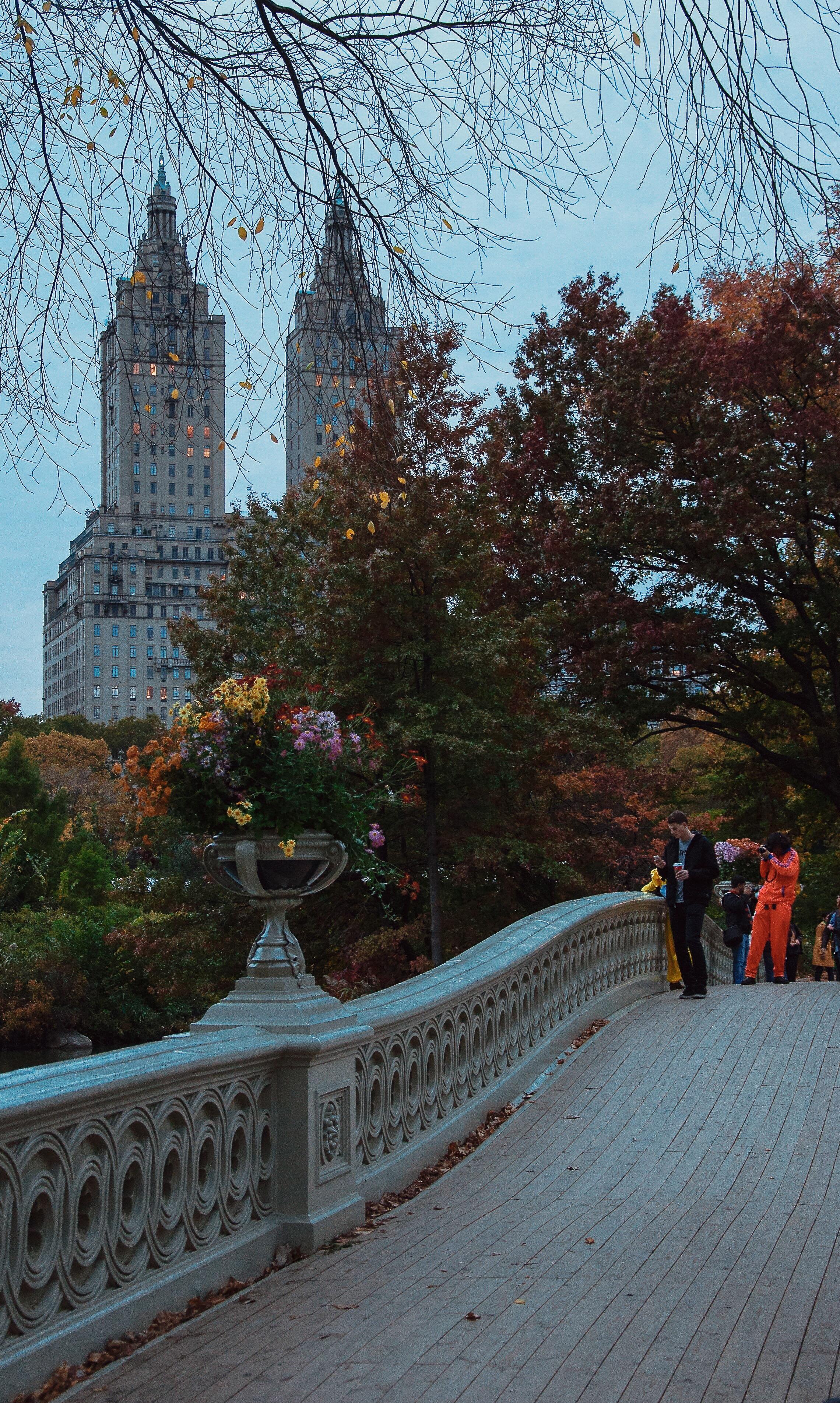 @ @ @San Remo & Central Park_Bow Bridge.JPG